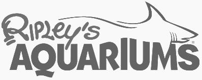 SkyPrep client aquarium