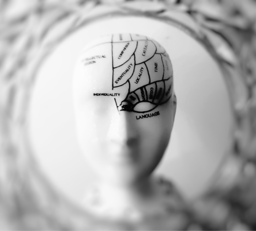 how brain works at the time of learning